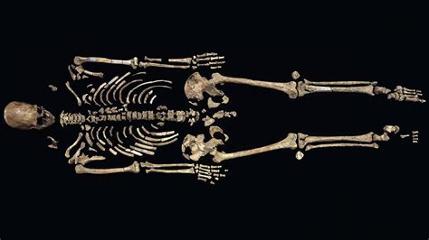 Mystery solved: 8500-year-old Kennewick Man is a Native