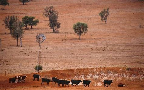 Drought-hit Australia has third-warmest year on record in