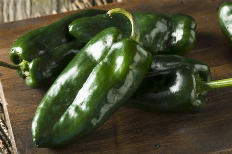 Poblano Pepper Nutrition: How Healthy Are They? | PepperScale