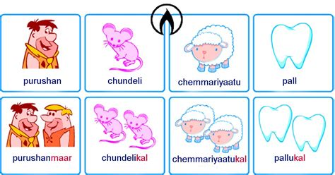 Plurals and gender of nouns in Malayalam - PACASA Academy