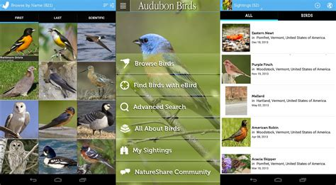 Audubon Birds Pro | Download APK For Free (Android Apps)