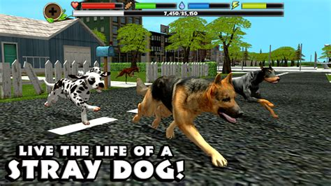 Stray Dog Simulator | Download APK For Free (Android Apps)